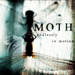moth endlessly in motion
