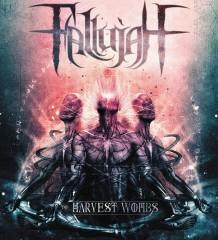 Fallujah - H