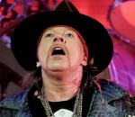 metalbase in axl rose